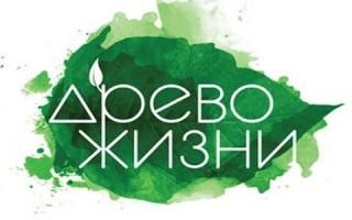 Владимирская область объявлена